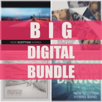 big digital bundle